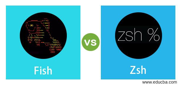 Fish vs Zsh