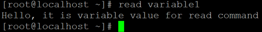 Linux Read Example 3
