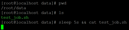 Linux Sleep Example 3a