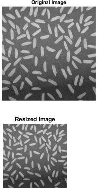 Matlab Image Resize - 1