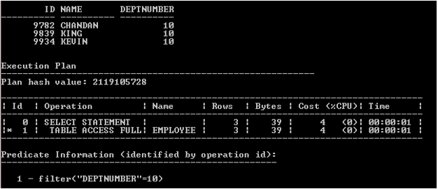 Oracle Bitmap Index output 3