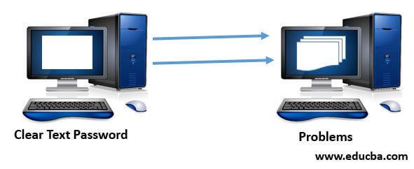 Password Authentication Mechanism