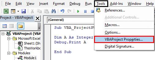 VBA Project properties Example 1-5