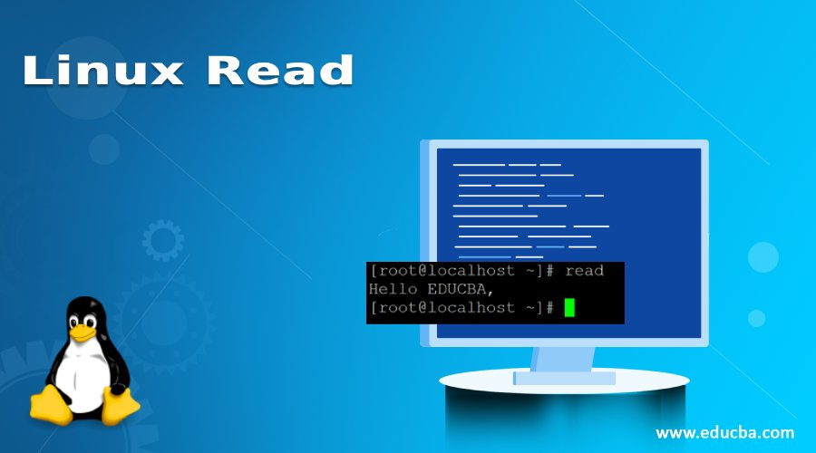 Linux Read