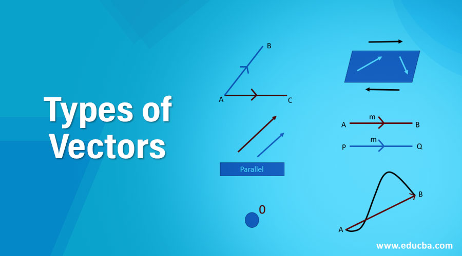 Types-of-Vectors