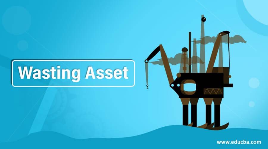 Wasting Asset