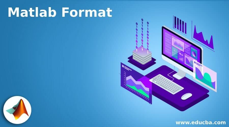 Matlab Format