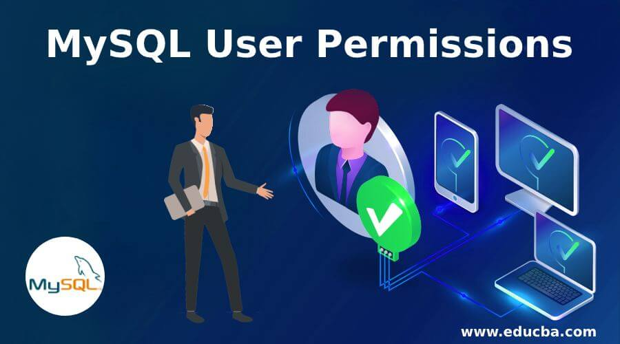 MySQL User Permissions