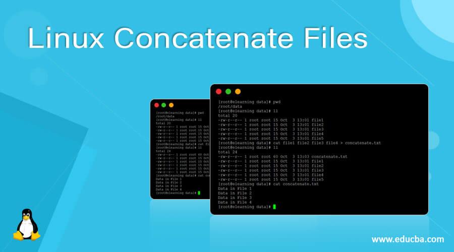 Linux Concatenate Files