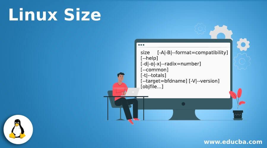 Linux Size