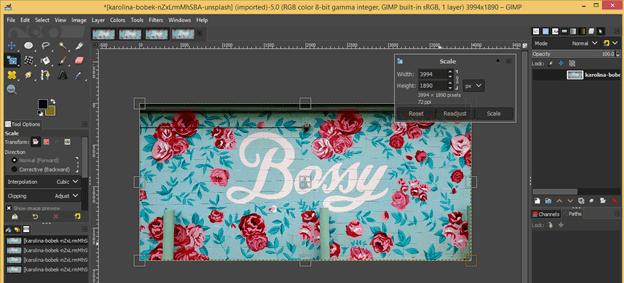 GIMP resize image output 11