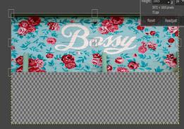 GIMP resize image output 15