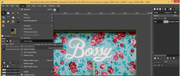 GIMP resize image output 2
