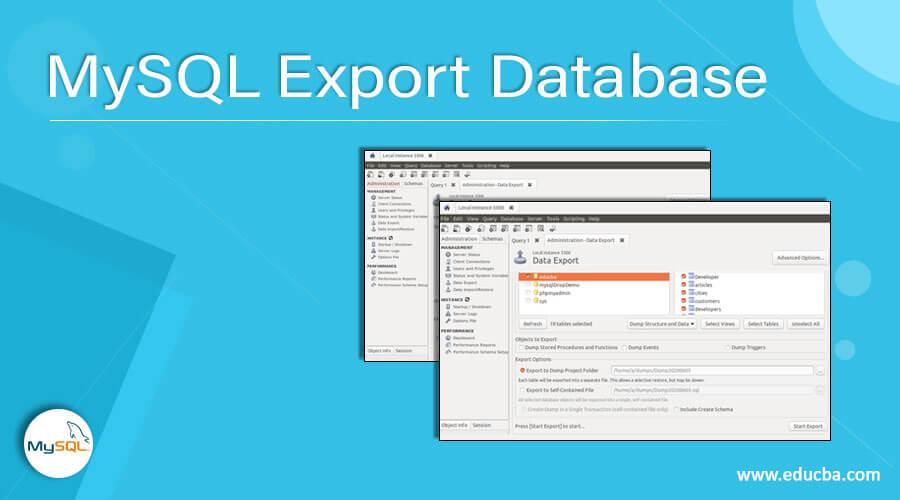 MySQL Export Database