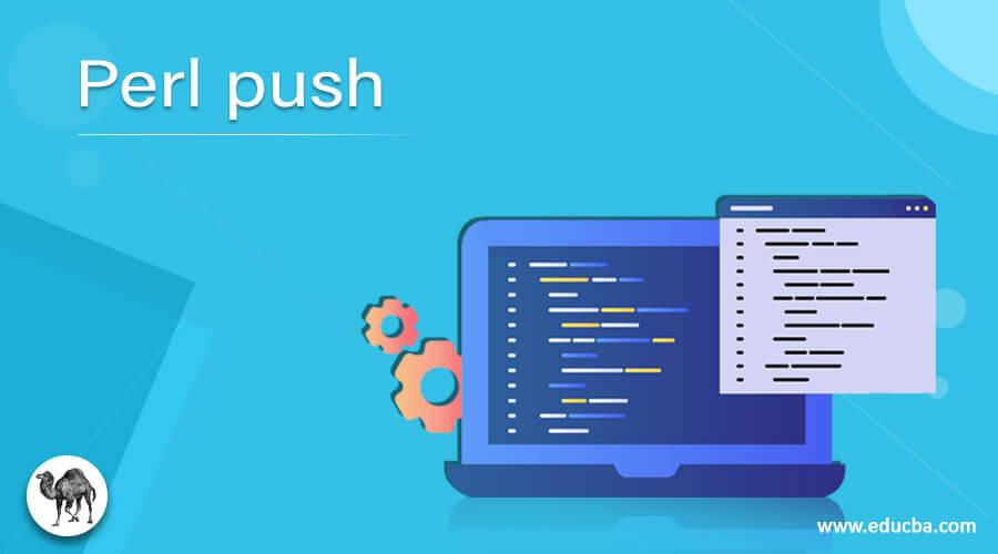 Perl push