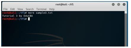 Kali Linux Terminal 13