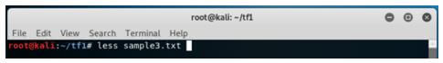 Kali Linux Terminal 14