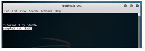 Kali Linux Terminal 15