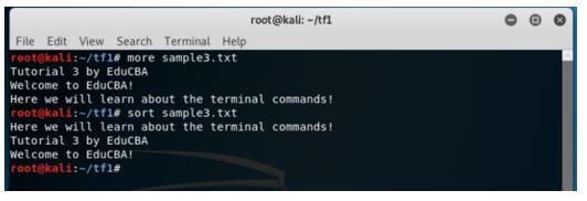 Kali Linux Terminal 16