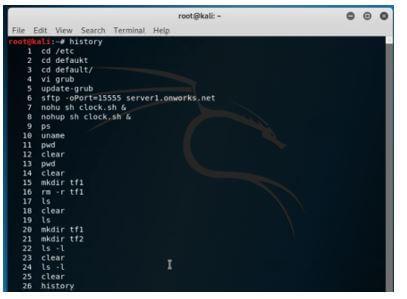 Kali Linux Terminal 23