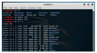 Kali Linux Terminal 8