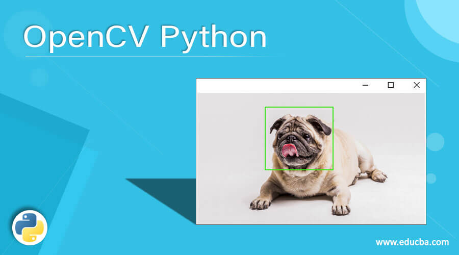 OpenCV Python