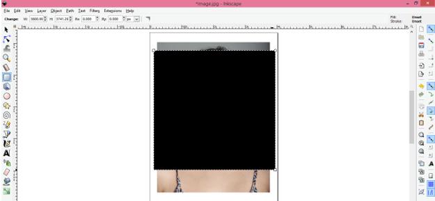 Inkscape Crop 5