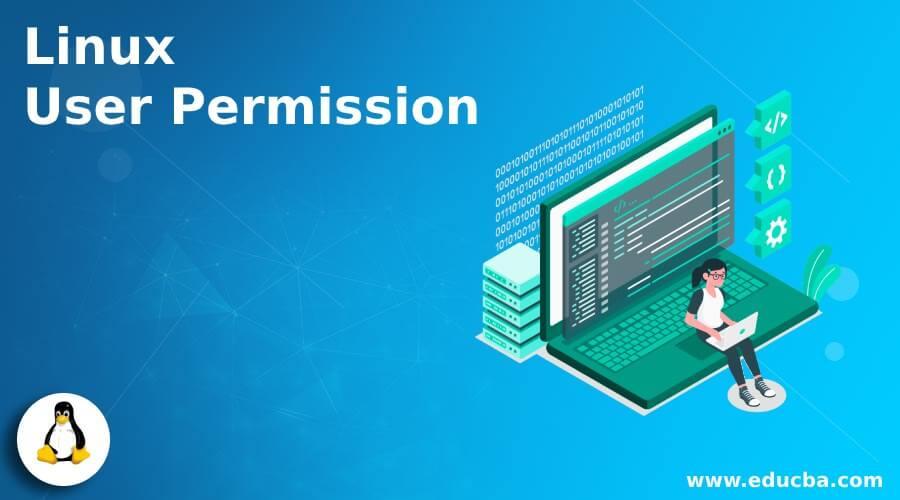 Linux User Permission