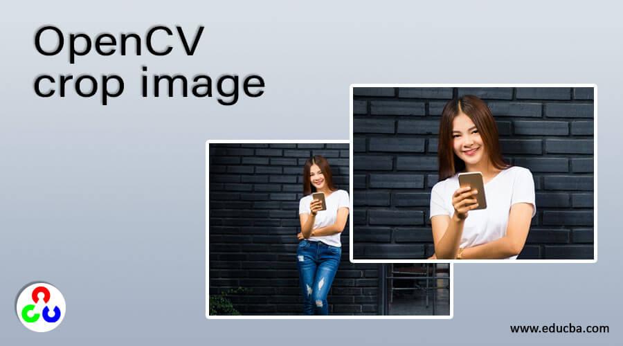 OpenCV crop image