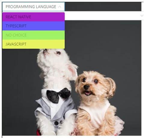"On clicking ""PROGRAMMING LANGUAGE"" dropdown"