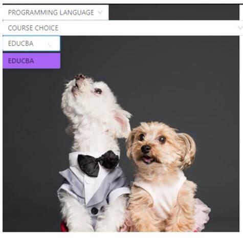 "On clicking ""EDUCBA"""