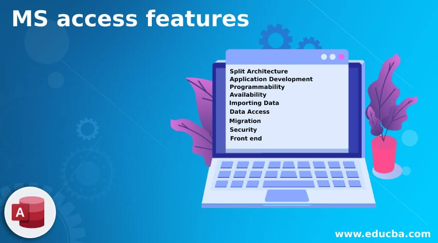 MS access features