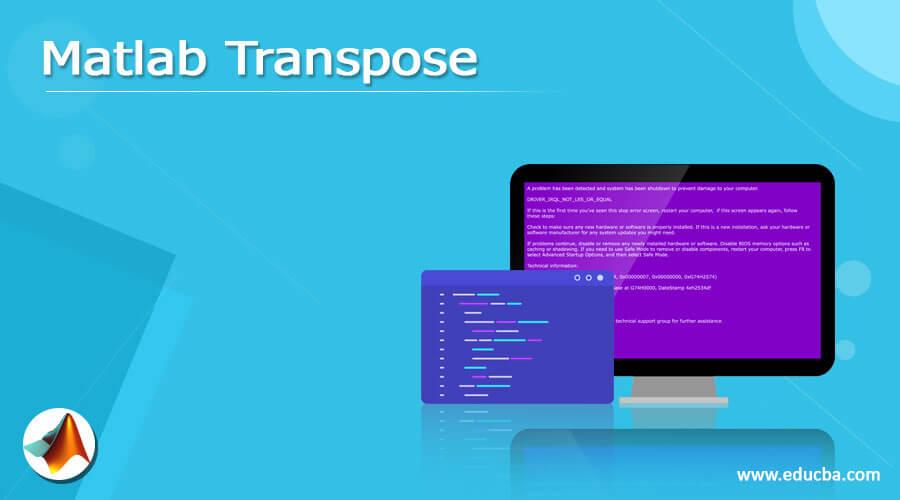 Matlab Transpose
