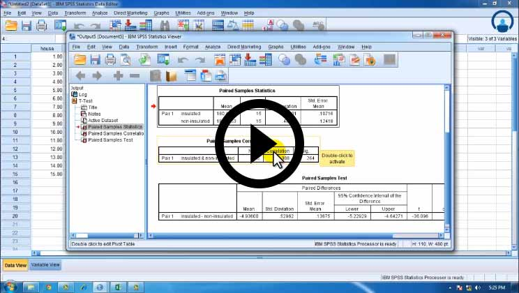 SPSS GUI for Statistical Analysis