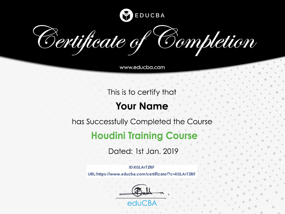 Houdini Training Course