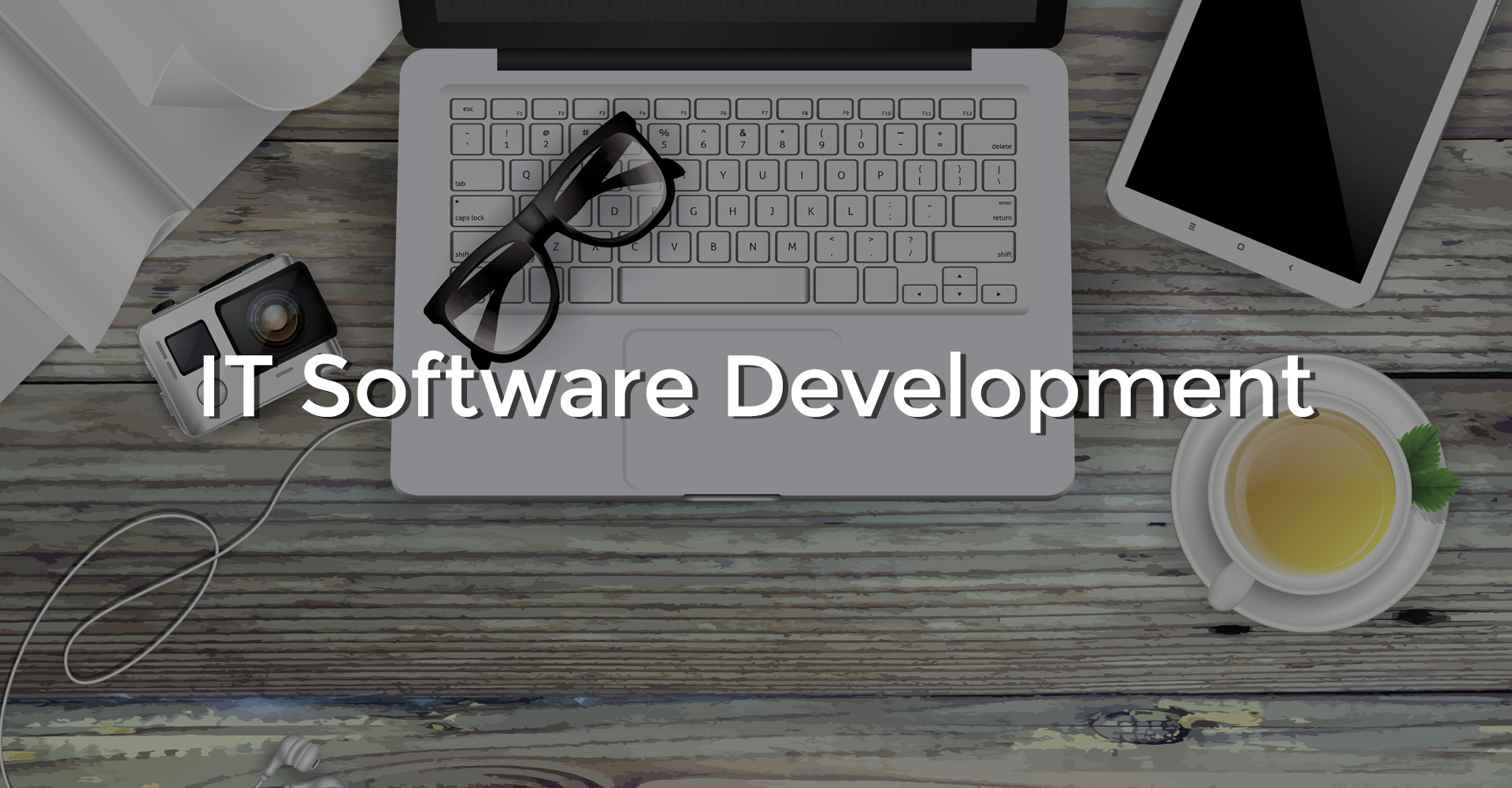 IT Software Development